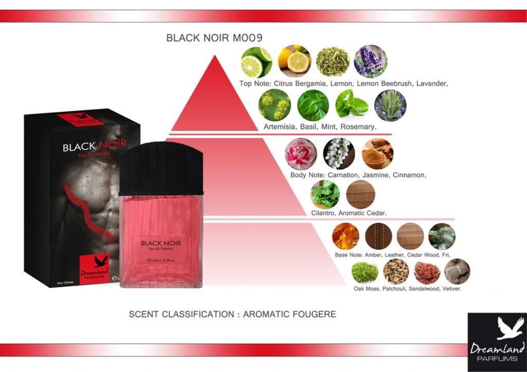 piramida zapachowa black noir wody toaletowej dla meżczyzn